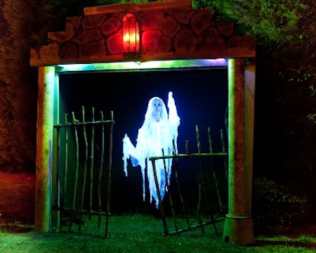 Creative Garden Spaces Inc, Halloween display, holiday displays