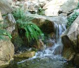 Babbling Waterfall