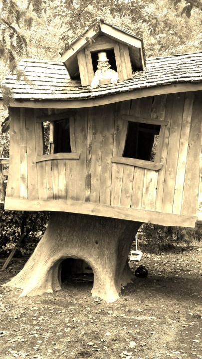 Creative Garden Spaces Inc, custom treehouse, halloween display, woodworking