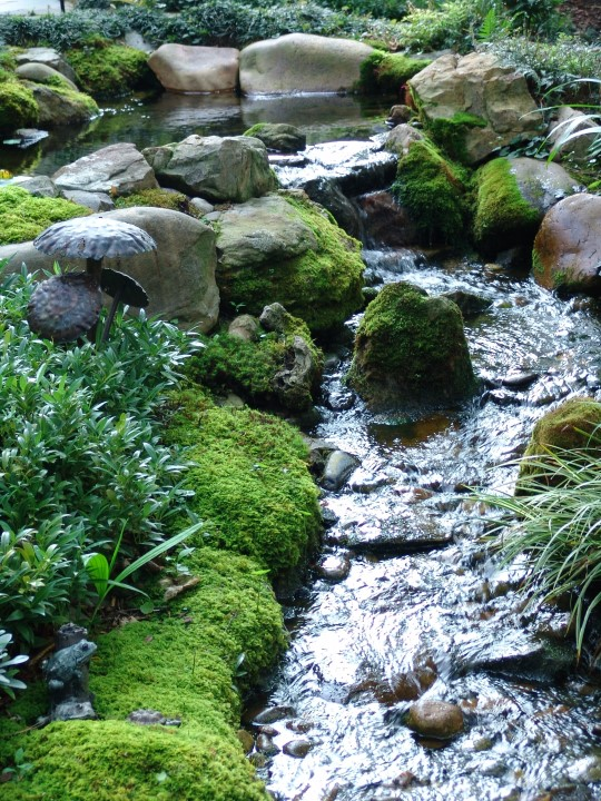Creative Garden Spaces Inc, Greensboro NC, water feature, natural looking stream, moss garden, mossy boulders, water garden, landscape boulders
