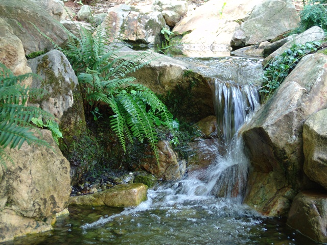 Creative Garden Spaces Inc, Statesville NC, natural waterfall, water feature, water garden, natural looking pond, koi pond, natural looking stream, mossy boulders, landscape boulders
